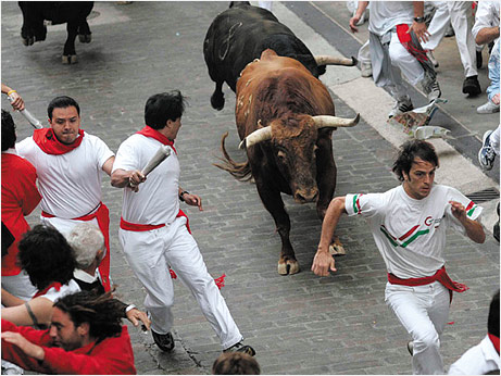 Run bulls Pamplona